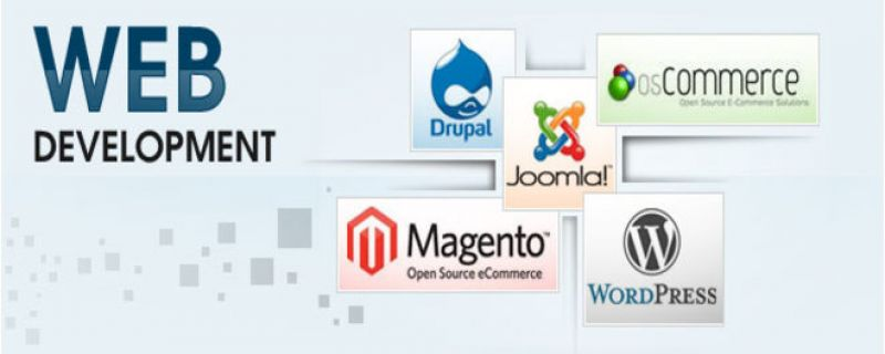 Best Web Application Development Company in India